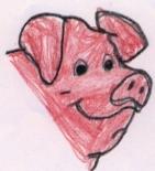 Pig_1